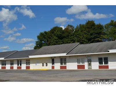 Remsen, Forestport, Barneveld, Boonville, Old Forge, Woodgate, West Leyden Commercial For Sale: 8022 Nys Route 12