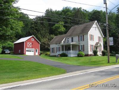 Herkimer County Single Family Home For Sale: 97 Fairfield