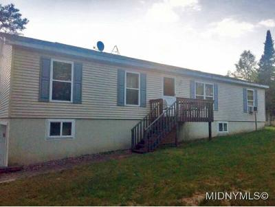 Herkimer County Single Family Home For Sale: 975 Pardeeville Road