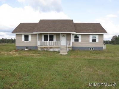 Herkimer County Single Family Home For Sale: 399 Nellis Rd.