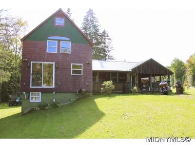 Herkimer County Single Family Home For Sale: 362 North Lake Road