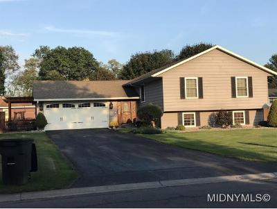 Rome Single Family Home For Sale: 7986 Inwood Drive