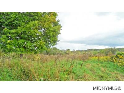WEST WINFIELD Residential Lots & Land For Sale: Sale Road
