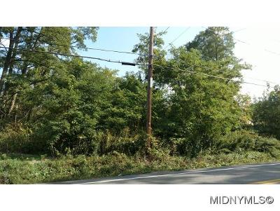 New Hartford Residential Lots & Land For Sale: Valley View Rd