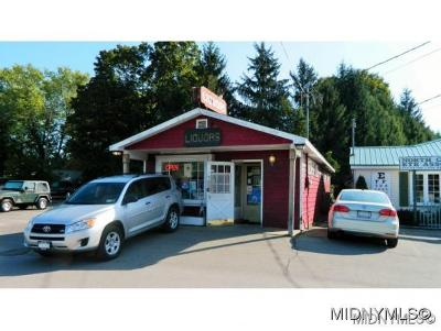 Trenton NY Commercial For Sale: $110,000