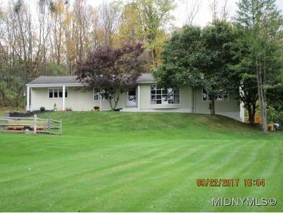 New Hartford Single Family Home For Sale: 38 Cascade Dr.