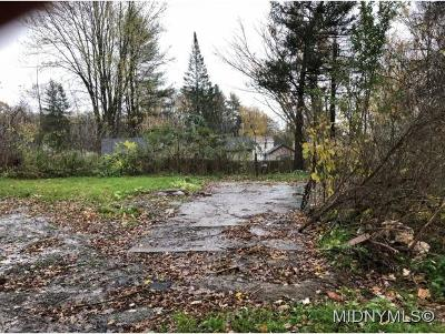 Utica Residential Lots & Land For Sale: 2011 State Route 5