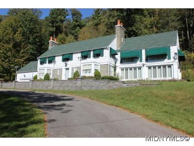 Herkimer, Ilion, Little Falls, Mohawk, Schuyler Single Family Home For Sale: 5037 State Route 167
