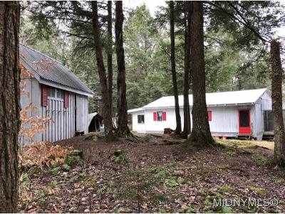 Forestport NY Single Family Home For Sale: $87,500