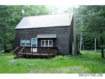 Herkimer County Single Family Home For Sale: 293 Okara Rd. W.