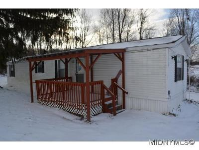 Oneida County Single Family Home For Sale: 6042 Munz Road