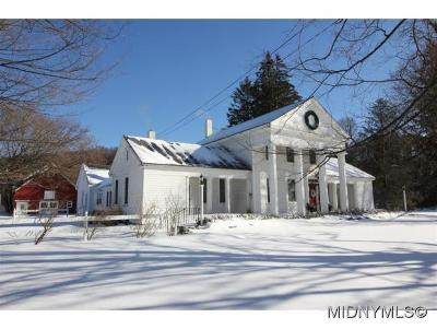 Herkimer County Single Family Home For Sale: 8040 State Route 28