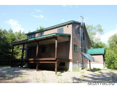 Herkimer County Single Family Home For Sale: 166 Ohio City Road