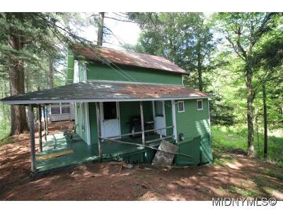 Forestport Single Family Home For Sale: 14053 Route 28