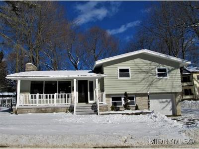 Herkimer County Single Family Home For Sale: 520 Steuben Rd