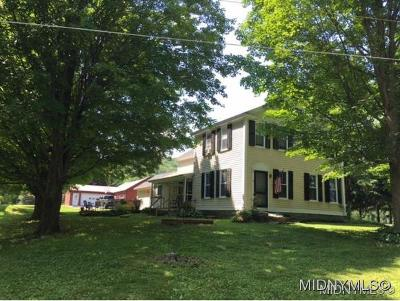 West Winfield NY Single Family Home For Sale: $259,900