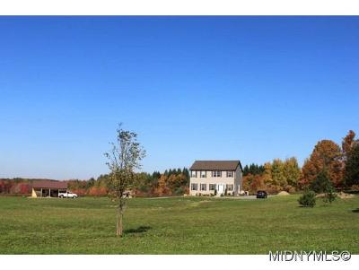 Herkimer County Single Family Home For Sale: 113 Miller Road