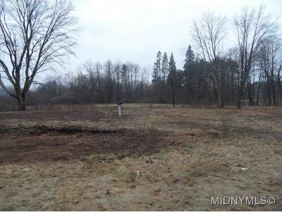 Rome Residential Lots & Land For Sale: 5698 Rome Taberg Road