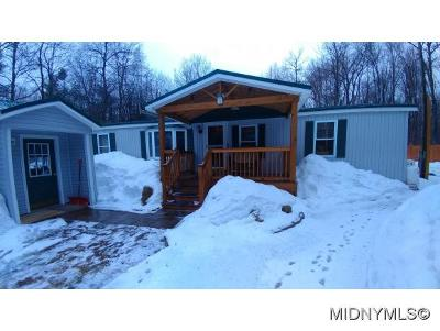 Forestport Single Family Home For Sale: 335 Buck Lane