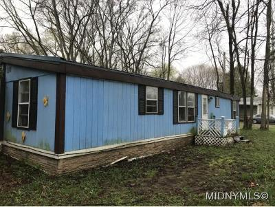 Herkimer County Single Family Home For Sale: 3400 State Route 28