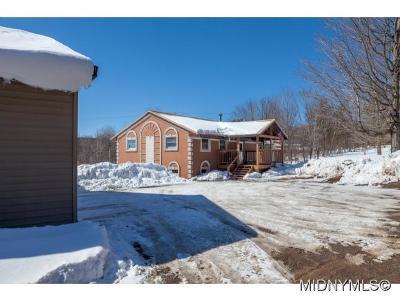 REMSEN Single Family Home For Sale: 9891 Evans Road