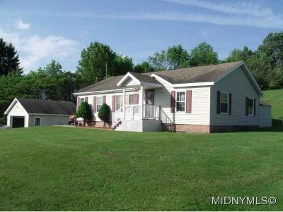 Herkimer County Single Family Home For Sale: 1319 Steuben Hill Road