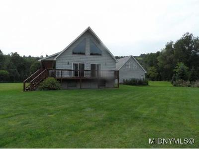 Herkimer, Ilion, Little Falls, Mohawk, Schuyler Single Family Home For Sale: 3384 State Route 28