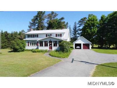 Herkimer County Single Family Home For Sale: 207 Nellis Road