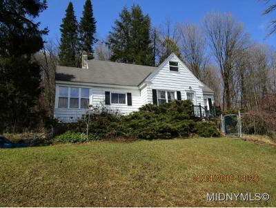 Herkimer County Single Family Home For Sale: 5207 State Route 167