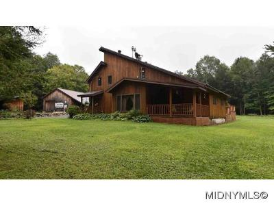Herkimer County Single Family Home For Sale: 972 Figert Road