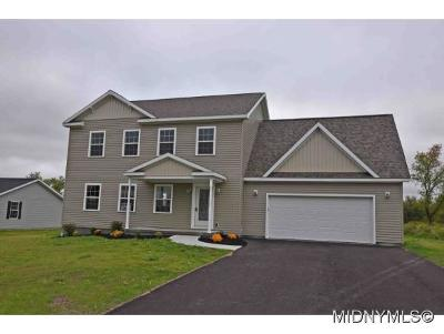 Herkimer, Ilion, Little Falls, Mohawk, Schuyler Single Family Home For Sale: 114 Knapp's Knolle