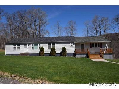 Herkimer County Single Family Home For Sale: 519 Gates Road