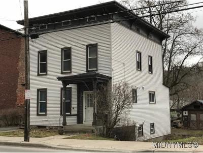 Herkimer County Single Family Home For Sale: 455 W Main St