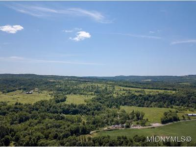 Herkimer, Ilion, Little Falls, Mohawk, Schuyler Residential Lots & Land For Sale: 132 W Fiery Hill Road
