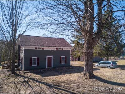 Herkimer County Single Family Home For Sale: 1057 Newport Gray Road