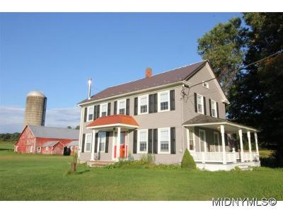 Herkimer, Ilion, Little Falls, Mohawk, Schuyler Single Family Home For Sale: 196 Elizabethtown Road