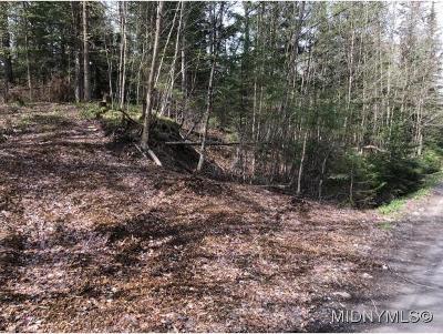 Forestport Residential Lots & Land For Sale: 165 Little Beaver Lake Rd.
