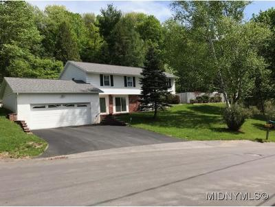 Herkimer, Ilion, Little Falls, Mohawk, Schuyler Single Family Home For Sale: 832 Westwood Drive