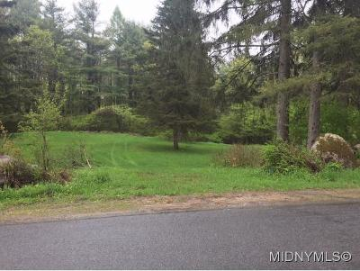 Remsen NY Residential Lots & Land For Sale: $12,500
