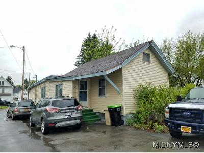 Herkimer County Single Family Home For Sale: 110 Canady Lane