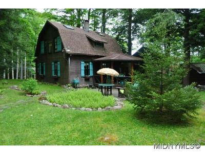 Old Forge Single Family Home For Sale: 250 South Shore
