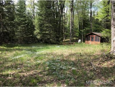 Forestport NY Residential Lots & Land For Sale: $22,500