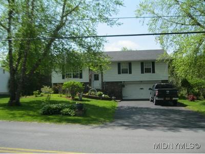 Rome Single Family Home For Sale: 6180 Hawkins Corners Rd