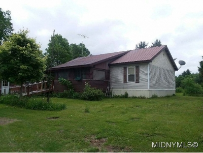 Herkimer County Single Family Home For Sale: 120 Black Creek Rd