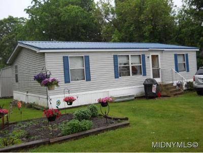 Bridgewater Single Family Home For Sale: 376 State Route 8