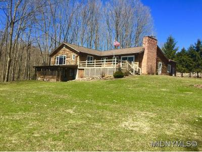 Westernville Single Family Home For Sale: 9165 Mullen Hill Road