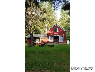 Herkimer County Single Family Home For Sale: Ed Smith Road