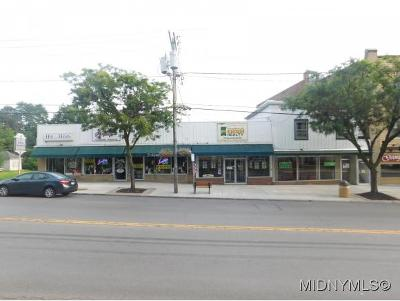 Commercial For Sale: 66 Genesee St