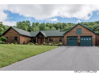 Waterville NY Single Family Home For Sale: $385,000
