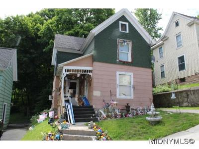 Herkimer County Single Family Home For Sale: 23 Orchard Street
